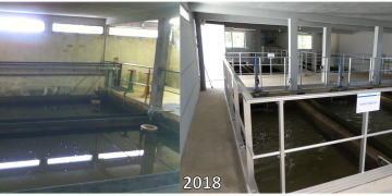Avant/après les travaux de mise aux normes de l'usine - Filtres à sable